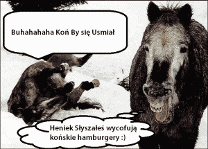 konskie hamburgery