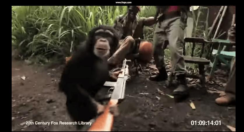 Stop Małpa Strzela